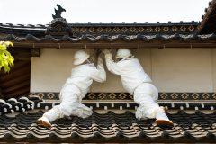 鳥取・島根のお屋敷で活躍する白い忍者たち。流通の「ハチの巣駆除」