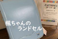 【流通 鳥取店でのすてきなエピソード】楓ちゃんのランドセル